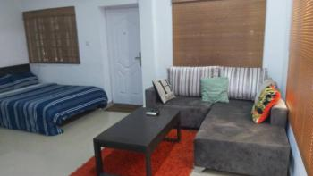 Large Furnished & Serviced Studio Apartment on The Ground Floor, Alternative Route, Off Chevron Drive, Lekki, Lagos, Mini Flat Short Let