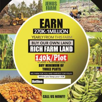 Jehus Farms Ltd, Ipara Remo, Around Ogere Remo, Remo North, Ogun, Commercial Land for Sale