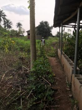 Poultry on an Acre, Ibogun Area, Olambe, Ifo, Ogun, Commercial Land for Sale