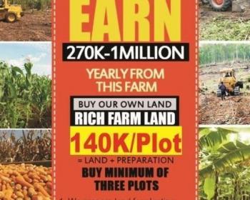 Plantain Farmland, Abeokuta North, Abeokuta North, Ogun, Commercial Land for Sale