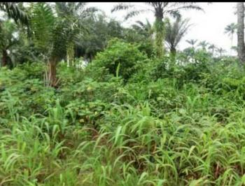 a Plot of Land, Irete, Owerri, Imo, Mixed-use Land for Sale