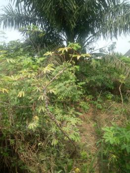 2 Plots of Land, Ihiagwa, Owerri, Imo, Mixed-use Land for Sale