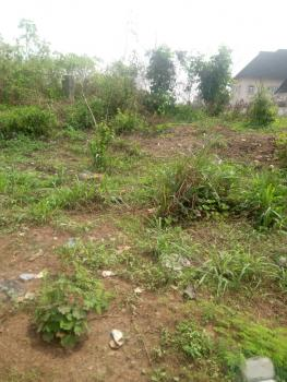 a Plot of Land, Naza Estate, Owerri, Imo, Mixed-use Land for Sale