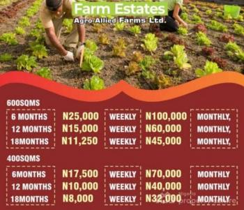 This Is The Best Farm Land for Your Agricultural Business. 20% Discount, Epe, Lagos, Commercial Land for Sale