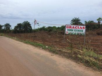 Looking for a Farmland for Your Agricultural Plans? Im Happy to Bring This to You Today. It Is Strictly for Agricultural Purpose, Ketu (strictly Agricultural Land), Epe, Lagos, Commercial Land for Sale