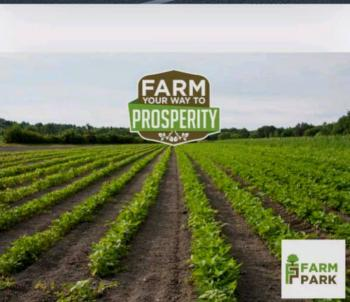 Agricultural Land @ Lagos, Epe, Lagos, Land for Sale
