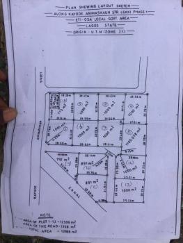 Residential Plot at Kayode Animashaun Street Measuring 1000sqm Each Lekki Phase 1 Off Admiralty, Lekki Phase 1, Lekki, Lagos, Residential Land for Sale