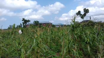 Two (2) Plots of Land at Opic Estate for Sale, Plots 6 and 7, Ogun State Property Investment Corporation (opic) Estate, Agbara, Ogun, Mixed-use Land for Sale