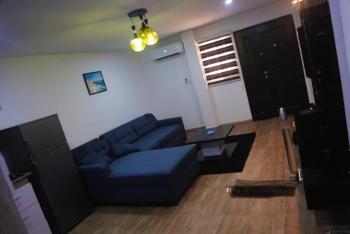 Newly Furnished 1 Bedroom, Ogidi Crescent, Lekki Phase 1, Lekki, Lagos, Flat Short Let