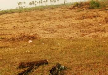 40 Plots of Dry Land in an Estate, Free Trade Zone, Ibeju Lekki, Lagos, Residential Land for Sale