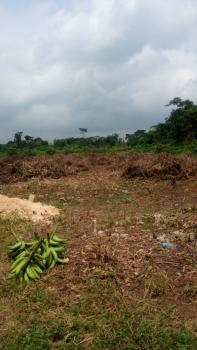More Than 50 Acres Or Hectares of Land, Agoiwoye Road, Quarry, Ijebu Ode, Ogun, Commercial Land for Sale