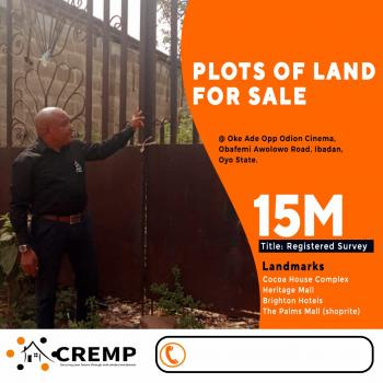 Land, Opposite Adion Cinema, Off Obafemi Awolowo Way, Oke Ado, Ibadan, Oyo, Mixed-use Land for Sale