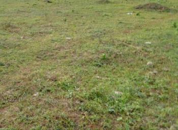 Land, Sunnyfield Estate, Oko Afo, Badagry, Lagos, Mixed-use Land for Sale