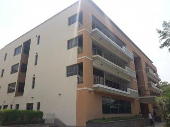 Well Finished & Fully  Serviced 3 Bedroom Luxury Apartment with Maids Quarters, Off Ibb Boulevard Way, Maitama District, Abuja, Flat for Rent