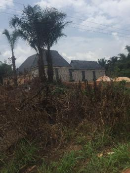 Land 50ft By 110 for Sale From Direct Owner, Along New Abraka Road After New Site College of Education and Just After Joaula Filling Station, Agbor, Ika South, Delta, Residential Land for Sale