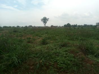 a Fine Table Land, Over 3 Hectares with C of O, Along Aba Road, Nekede, Owerri, Imo, Mixed-use Land for Sale
