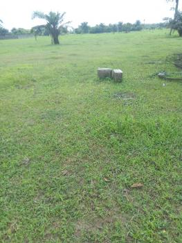 Premium 8 Acres of Land for Sale, New Port Harcourt By International Airport, Port Harcourt, Rivers, Mixed-use Land for Sale