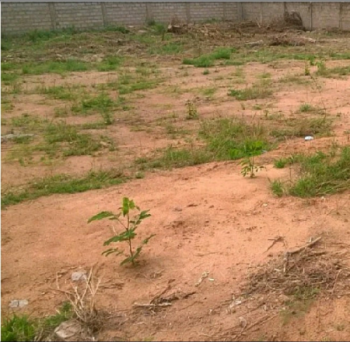 800sqm Land for Sale in Cowrie Creek Estate, Ikate Lekki, Lagos, Cowrie Creek Estate, Ikate Elegushi, Lekki, Lagos, Residential Land for Sale