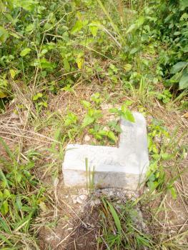 3 Hectares of Land with Survey Red Copy, Ikereku Oteyi, Ewekoro, Ogun, Land for Sale