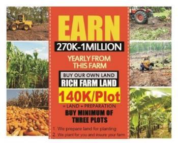 Rich Farm Land, Remo North, Ogun, Land for Sale