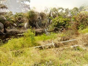 a Plot of Land, Lekki Scheme 2, Lekki Phase 2, Lekki, Lagos, Residential Land for Sale