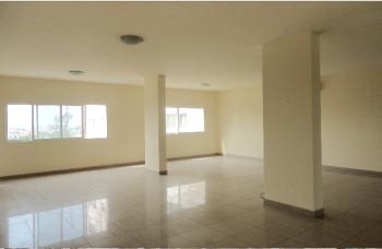 Luxury 4 Bedroom Penthouse with Excellent Facelities, Gerrard Road, Old Ikoyi, Ikoyi, Lagos, Flat for Sale