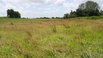 1000 Square Meters of Residential Land, Railway Compound, Ebute Metta West, Yaba, Lagos, Residential Land for Sale