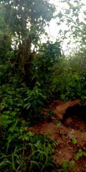an Acre of Agricultural Land at Atan, Kajola Village, Off Atan-owode Road, Atan Ota, Ado-odo/ota, Ogun, Mixed-use Land for Sale