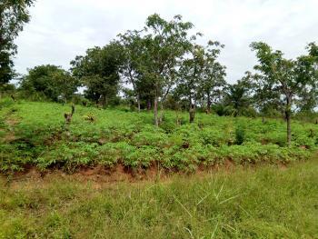 200 Plots of Land, Isiagu, Nando & Aguleri, Anambra, Anambra, Mixed-use Land for Sale