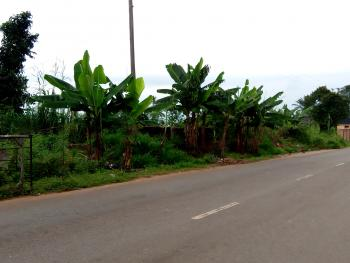 Lands, Awka, Anambra, Residential Land for Sale