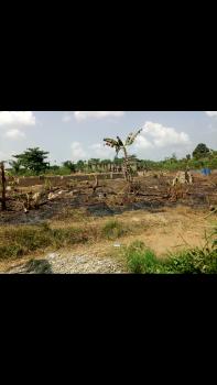 Large Developing Farm Land, Kobape Town, Abeokuta Express Way, Siun, Km 46, Ogun, Mixed-use Land for Sale