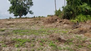 Distress  20 Hectares, Epe Expressway Shoprite, Sangotedo, Ajah, Lagos, Mixed-use Land for Sale