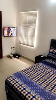 an En Suite Furnished Room in a 3 Bedroom Flat, Off Circle Mall Road, Osapa, Lekki, Lagos, Self Contained (single Rooms) for Rent