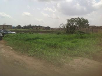 Peace Garden Estate, Ayobo Road, P&t Bus Stop, Boys Town, Ipaja, Lagos, Residential Land for Sale