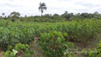Plots of Farm Land, Epe, Lagos, Industrial Land for Sale