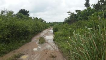 Acres of Land, Ibarapa East, Oyo, Mixed-use Land for Sale