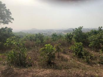 Virgin Land, Guzape District, Abuja, Residential Land for Sale