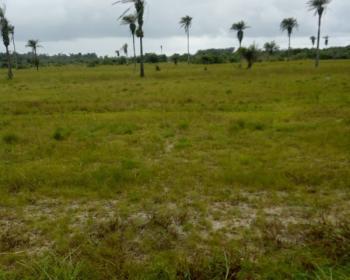 Cheap Plots of Land, Dangote Refinery Town, Orimedu, Ibeju Lekki, Lagos, Residential Land for Sale