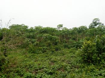 Commercial 30 Acres, Ode Omu Town on Gbongan-oshogbo Expressway, Aiyedaade, Osun, Commercial Land for Sale