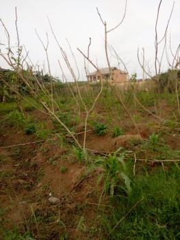 2 Acres of Dry Land with a Warehouse, Fenced Round, Registered Conveyance, Shasha, Alimosho, Lagos, Mixed-use Land for Sale