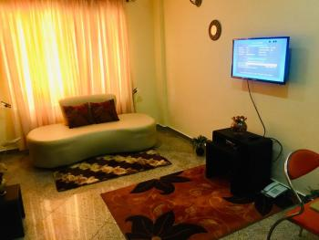 Fully Furnished Flat, Palace Way Close to Fourpoint, Victoria Island (vi), Lagos, Mini Flat for Rent