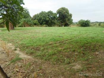 Uprooted 20 Acres, Iseyin, Oyo, Land for Rent