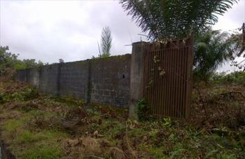 Land, Good News Estate, Just After Ocean Palm Estate, Canaan Estate, Ajah, Lagos, Mixed-use Land for Sale