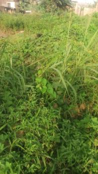 Standard 2 Plots of Land in Good Location, Aruna, Close to Fagba, Ogba, Ikeja, Lagos, Residential Land for Sale