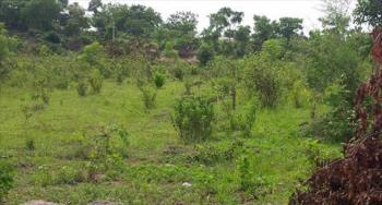 3 Acres of Land, Agege Motor Rd, Mushin, Lagos, Mixed-use Land for Sale