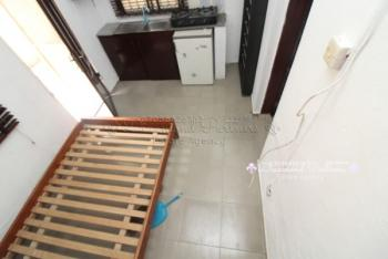 Self Contain,ed Serviced, Lekki Phase 1, Lekki, Lagos, Self Contained (single Rooms) for Rent