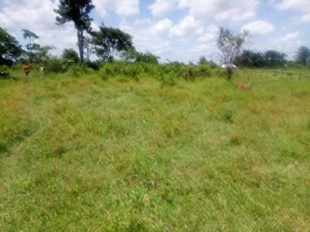 Land (2.860 Hectares of Land ), at Ologbo, Benin Sapale Road, Ikpoba Okha, Edo, Mixed-use Land for Sale