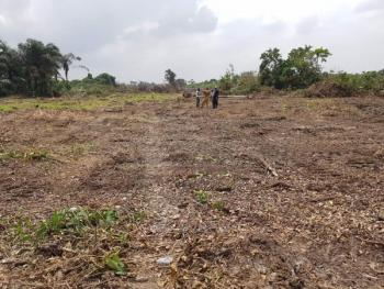 Plots of Land for Both Residential and Commercial Use, Orimerunmu, Ibafo, Ogun, Residential Land for Sale