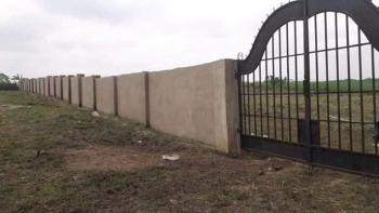 Own a Plot of Land Where Multinationals Companies Are Located, Ibeju Lekki, Lagos, Land for Sale