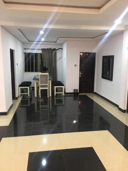 Tastefully and Newly  Built 2 Bedroom Penthouse Apartment, Osapa, Lekki, Lagos, Flat for Rent